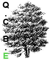 logo-QCBE2