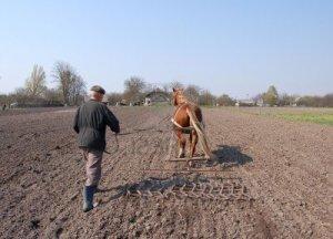 agriculteur-au-travail-labourer-la-terre