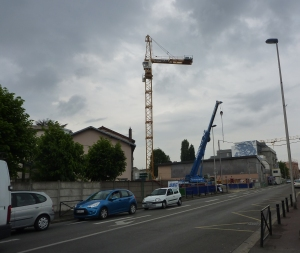 Grue_Charcot_Aulnay_1