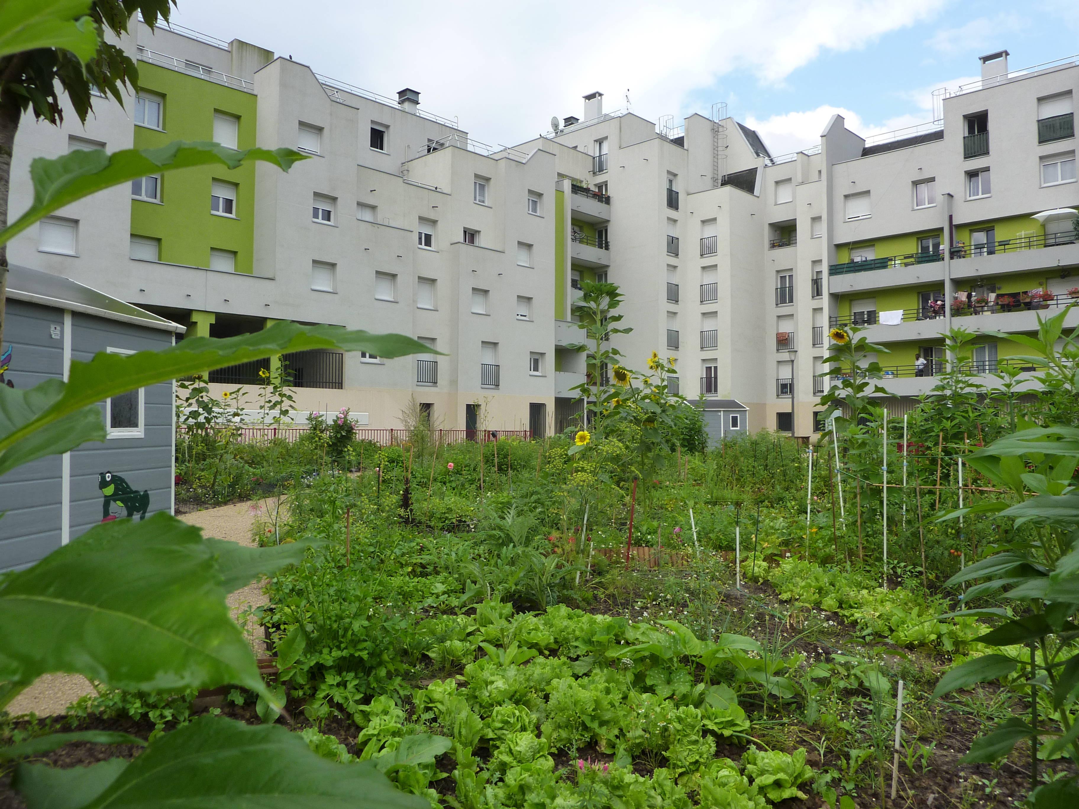 Le jardin partag du quartier du gros saule aulnay sous - Mobilier jardin but aulnay sous bois ...