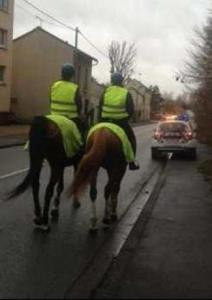 cheval_aulnay_police
