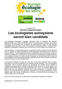 CP-EELV20150205-candidature