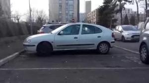Detritus_Savigny_Aulnay