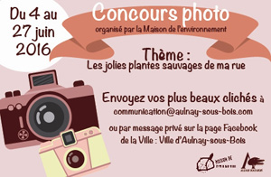 RTEmagicC_concours-photo-central.jpg (1)